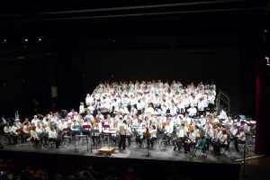 Retina Concert Provins